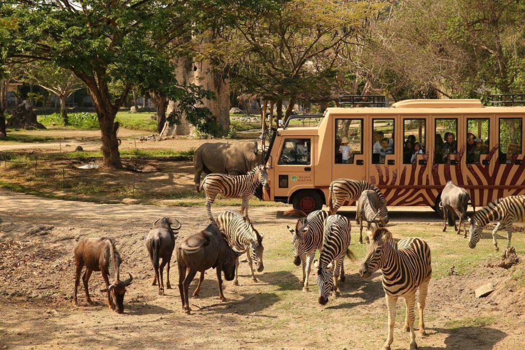 Lokasi dan Harga Tiket Masuk Taman Safari